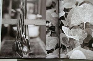 Botanical photography 1