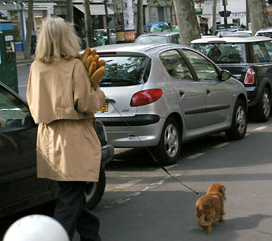 Paris: woman with baguettes and small dog