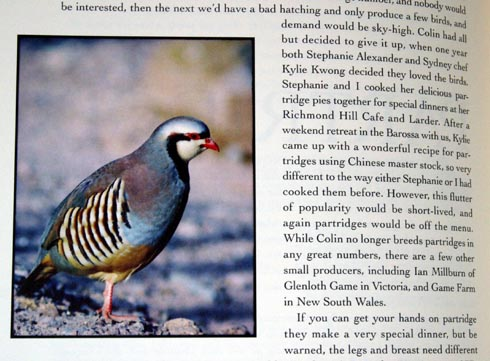 partridge excerpt