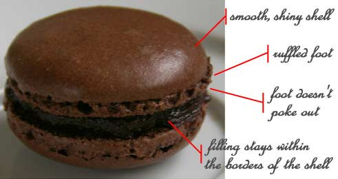 chocolate macaron