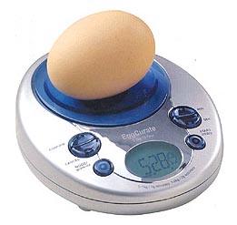 eggcuratescales.jpg