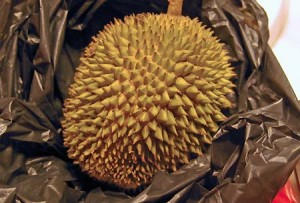 Beprickled stinkpots: My only-moderately-helpful guide to durian