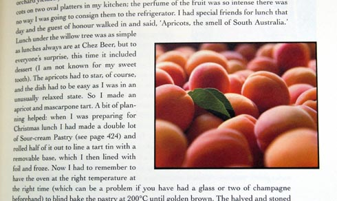 apricots excerpt
