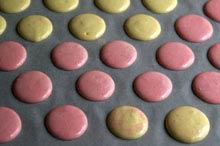 coloured macarons raw