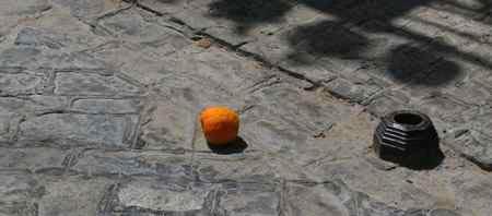 svq_orange1.jpg